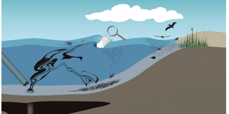 Graphic Created by Jason Mallett, Consortium for Ocean Leadership, for the Gulf of Mexico Research Initiative.